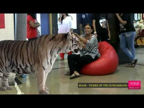 a Roar - Tigers Of The Sunderbans free download full movie in hindigolkes