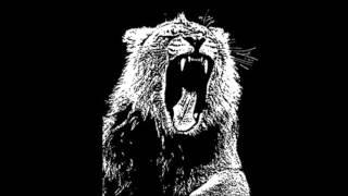 Martin Garrix - Wild Animals Video