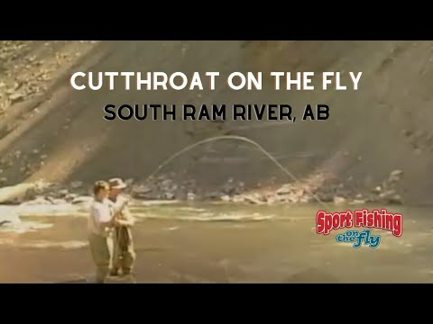 How To Fly Fish The South Ram River In Alberta, Canada