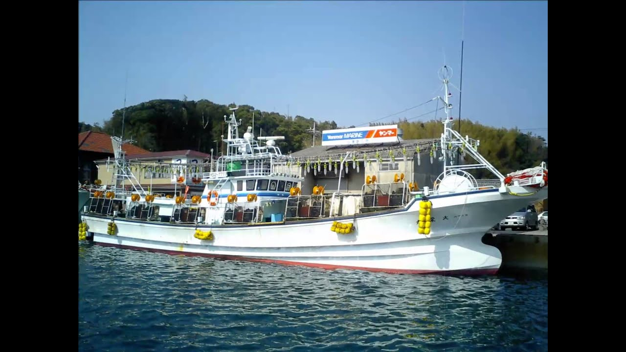 イカ 釣り船