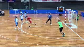 ハンドボール2018 大阪インカレ 女子準決勝  大体大 vs 東海大 ダイジェスト版