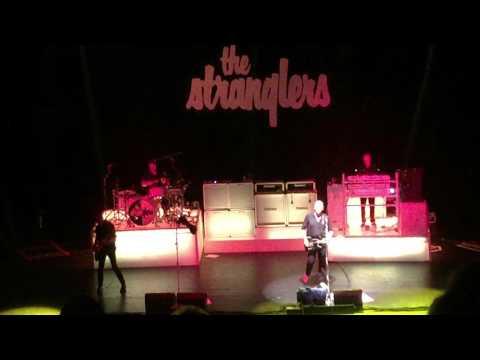 The Stranglers Golden Brown @ Apollo Manchester 26/03/2016