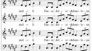 Verdi - Nabucco - Va pensiero - Santa Cecilia Choir and Orchestra