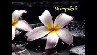 DEWI YULL - KAU BUKAN DIRIMU (LIRIK), Klip : Dina