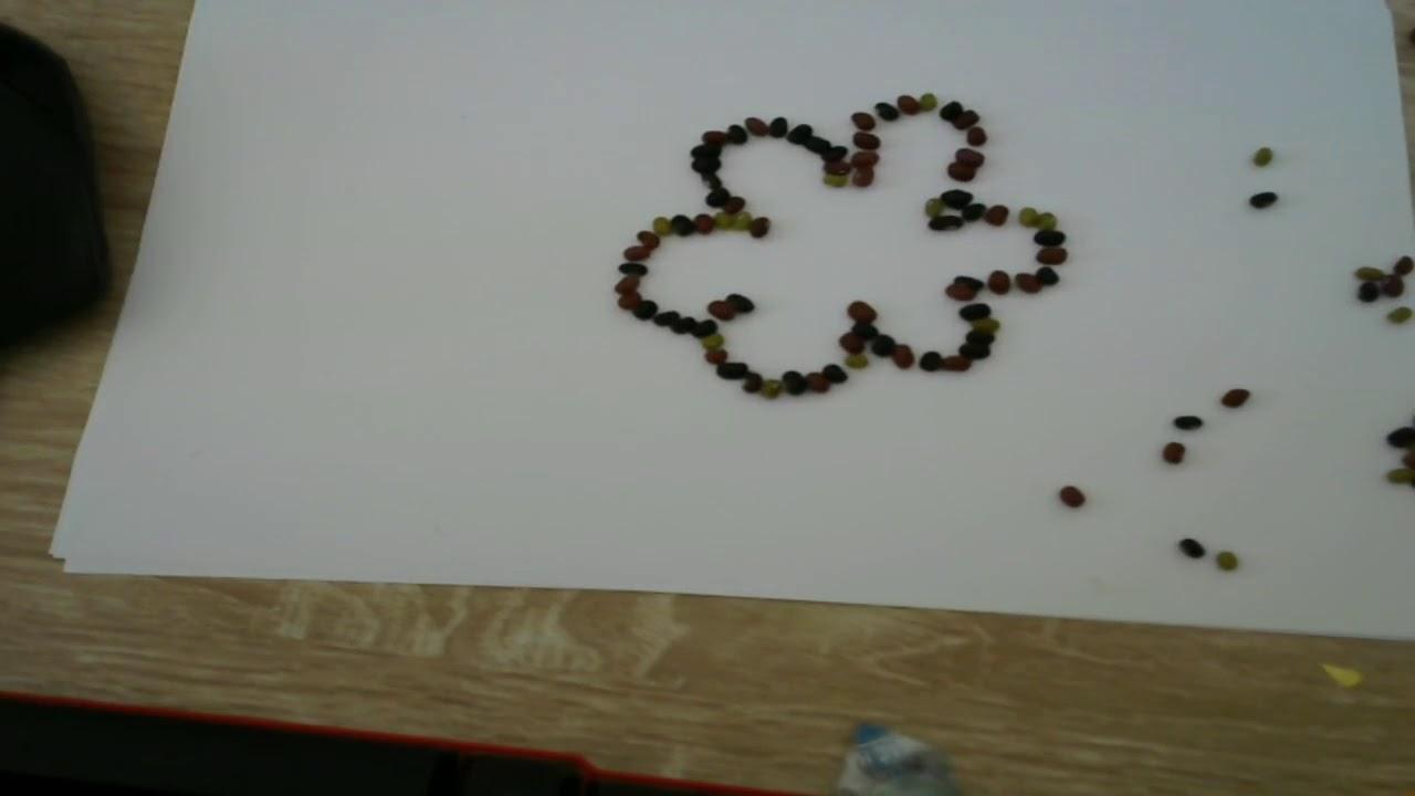 Hướng dẫn xếp hoa mai ngày tết từ những hạt đậu