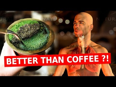 Why You Should Ditch Coffee For The Benefits of Yerba Mate