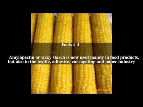 Waxy corn Top # 6 Facts - YouTube