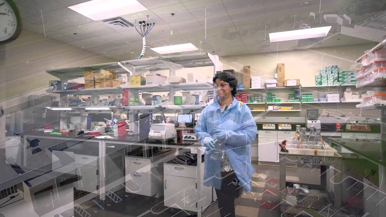 Foundation Park A Home For Life Science Innovation In North Central Florida Youtube