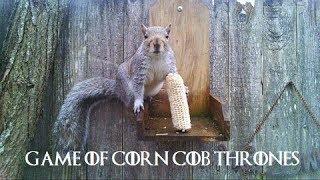 Game of Corn Cob Thrones - episode 10