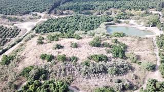 Tel Kabri - Aerial Views (BibleWalks.com)