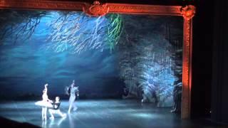 Лебединое озеро(спектакль в консерватории им Н. А. Римского - Корсакова г. Санкт-Петербург (сентябрь 2014), 2014-09-26T07:53:21.000Z)