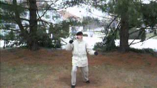 CMC 37P TAI CHI FORM: Posture 37, detail