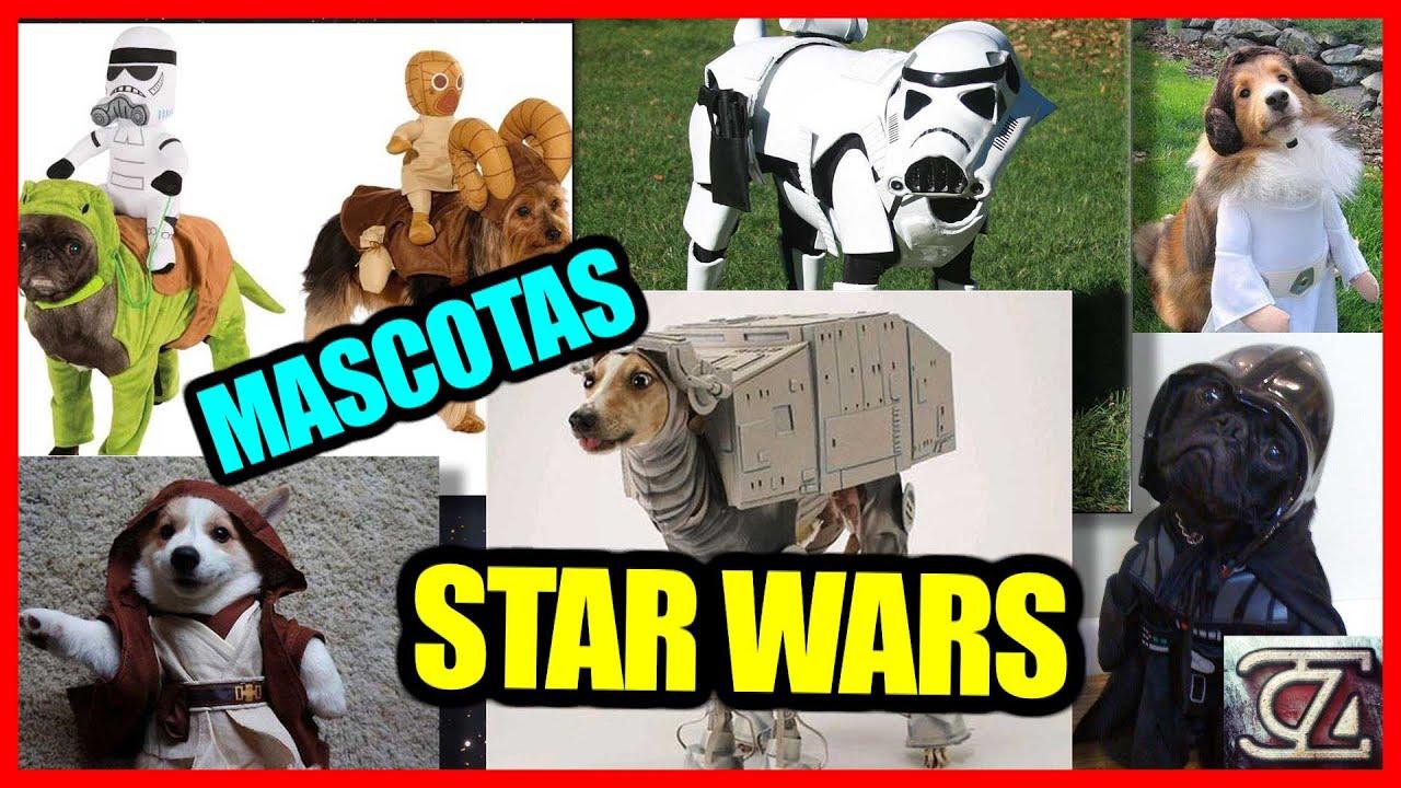 MASCOTAS STAR WARS!! - Perritos disfrazados de sus personajes ...