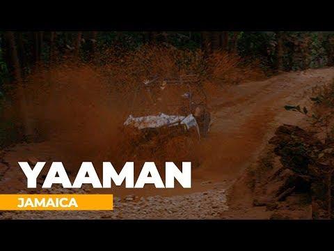 Jamaica's Yaaman Adventure Park | Live with Amstar