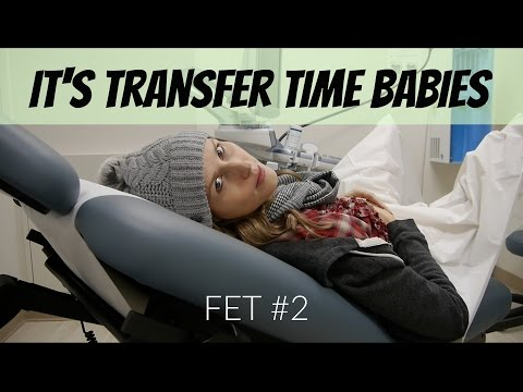 IVF FET #2-  Frozen Embryo Transfer Day