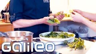 Heimisches vs. exotisches Superfood | Galileo | ProSieben
