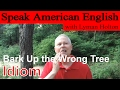 Idiom #23: Bark Up the Wrong Tree - Learn to Speak American English