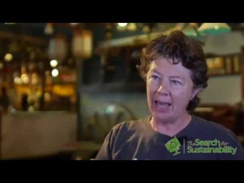 The Search for Sustainability - Episode 7: Creative Sustainability through Art, Music and Media