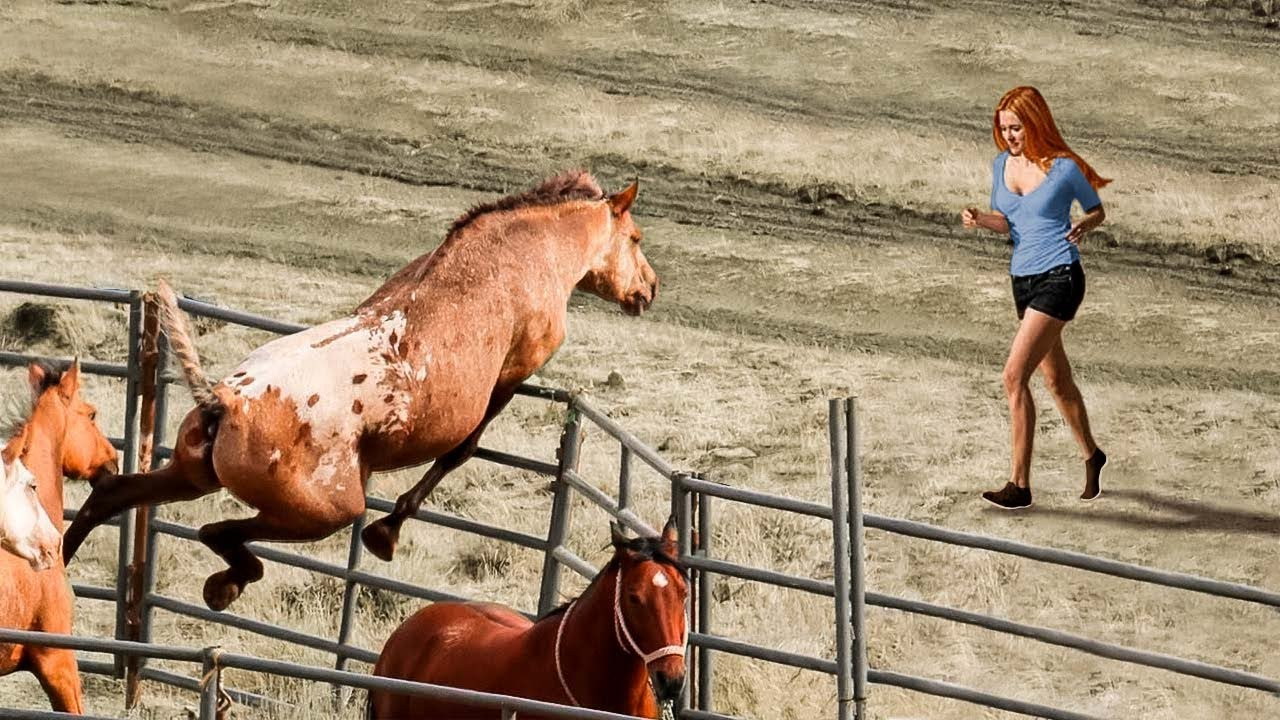 40 Momentos Conmovedores de Animales Que Derretirán Tu Corazón