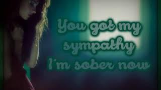 Palisades Let Down Lyrics On Screen