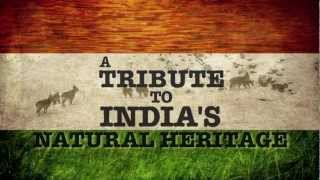 Wild India : Jana Gana Mana National Anthem of India HD