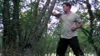 Chuan Qi Dao: tree training