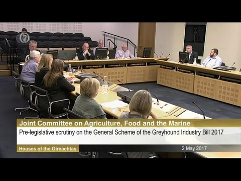 Greyhound industry cruelty highlighted at Oireachtas meeting