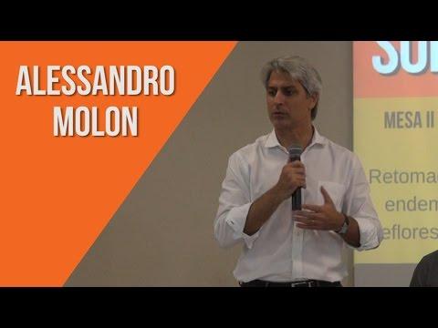 Fala completa: ALESSANDRO MOLON