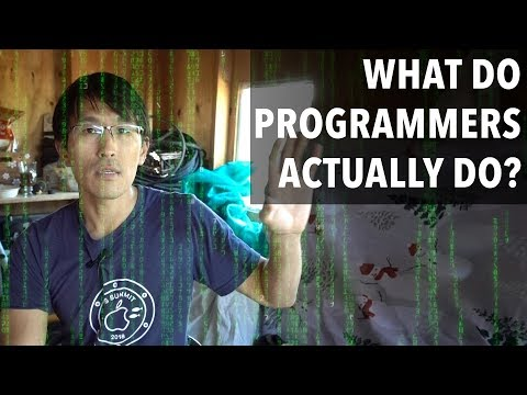 What do programmers actually do?