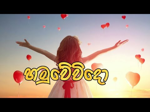 Hamuwevido (හමුවේවිදෝ) - Nadeera Nonis New Song 2019 | Cartoon Version