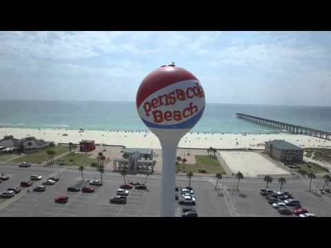 Destin and Pensacola Beach Florida DRONE VIEW of  DOLPHINS & SHARKS at DESTIN PASS!