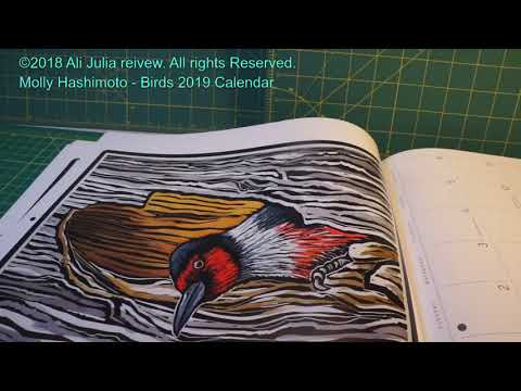 molly-hashimoto---birds-2019-calendar-(product-review)