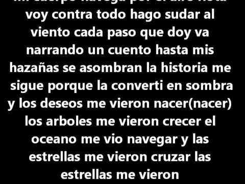 Me Vieron Cruzar Calle13