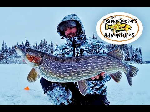 How To Tip Up Fishing Big Northern Pike