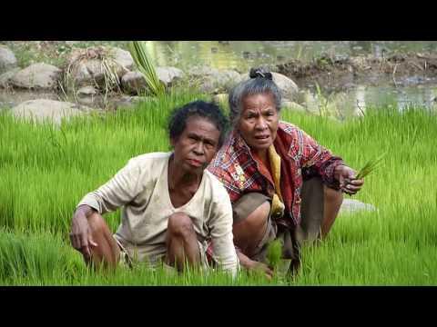Indonesia (6/2014) - Sunda Islands