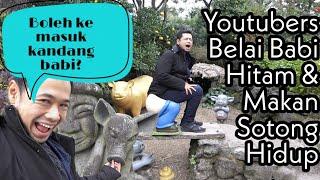 Makan Sotong Hidup-Hidup & Lawatan Kandang Babi Hitam (Last Day in Jeju)