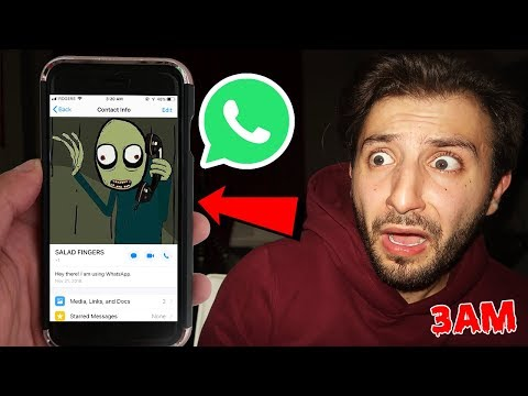 DONT MESSAGE SALAD FINGERS ON WHATSAPP AT 3AM *THIS IS WHY* | SALAD FINGERS IS REAL?!
