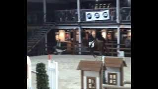 Baixar Els Willem Wakonda jumping Mechelen LRV proef