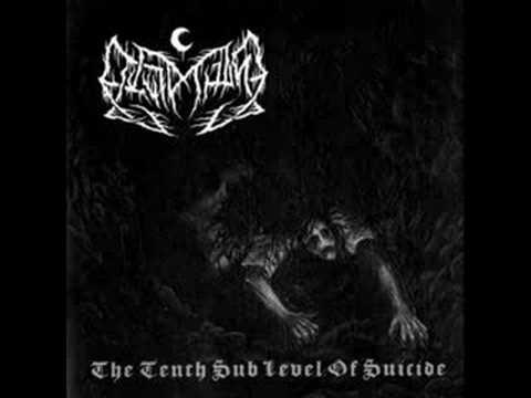 Leviathan - The Idiot Sun