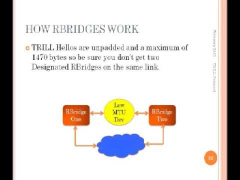 RBridges and the IETF TRILL Protocol