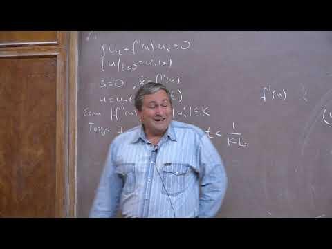 Горицкий А. Ю. - Уравнения математической физики - Обобщённые решения