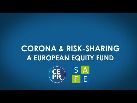 Webinar: Corona & Risk Sharing: A European Equity Fund