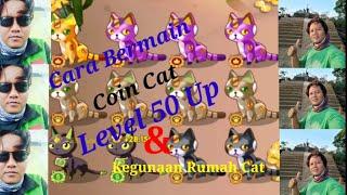 Cara Bermain & Kegunaan Rumah Kucing Game Coin Cat di Aplikasi CLipClaps