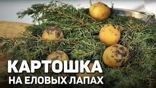 КАРТОФЕЛЬ НА ПИХТЕ - праздничное блюдо из картофеля от шеф повара Станислава Песоцкого