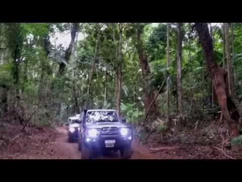 rainforest trip may 2015