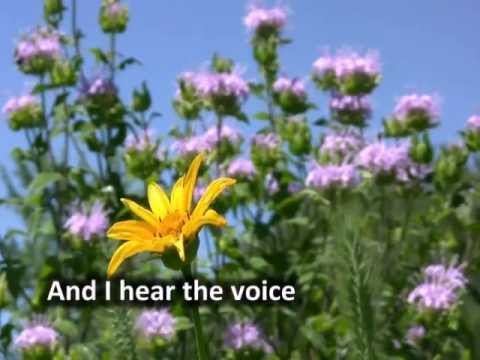 I will rise with Lyrics by Chris Tomlin
