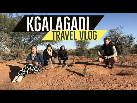 South Africa Travel Vlog - Augrabies Falls and Kgalagadi Transfrontier Park