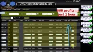 FinancialMarketsEdu.com  - Binary Options Promo Pre-launch