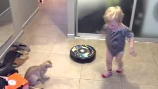 Кошка и робот пылесос