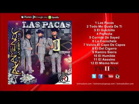 Los Alameños De La Sierra - Las Pacas - Disco Completo 2018